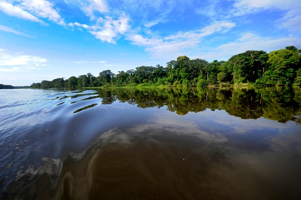 El Sistema Nacional de Áreas de Conservación (Sinac), encargado de la administración de los parques nacionales, estuvo entre los últimos lugares en el índice de gestión institucional (IGI) del 2014 de la Contraloría. En la imagen el Parque Nacional Tortuguero, en LImón.   GRACIELA SOLIS