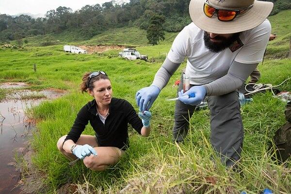 Karen Lloyd y Donato Giovanelli recolectan muestras en una laguna en las faldas del volcán Irazú. Fotografía: Tom Owens