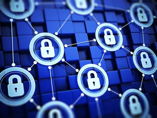 Los expertos recomiendan ser cautelosos con la información que se comparte en plataformas digitales y que pueden ser una tentación para los ciberdelincuentes. | ISTOCK