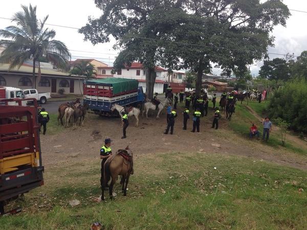 La Fuerza Pública custodió a los 21 animales para que no ingresaran al tope.