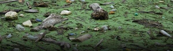 Plástico desechable