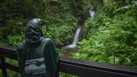 Recuperación de bosques en Costa Rica pasó de 47% a casi 60%