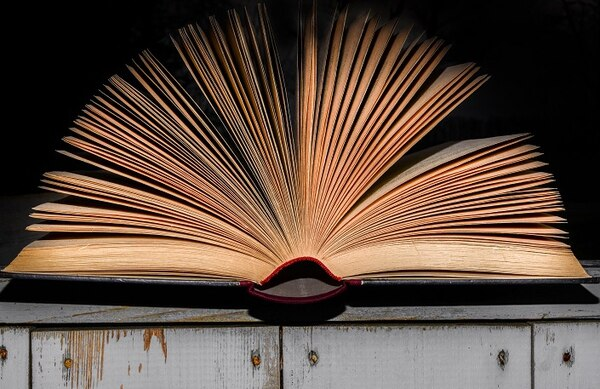 En Costa Rica, el 58% de los estudiantes alcanza un nivel 2 de competencia en lectura de seis niveles posibles.