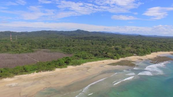 Playa Avellanas: Una nueva favorita, si no que lo confirmen las cientos de fotos que los visitantes se toman en el manglar muerto que conduce a la arena blanca del lugar.