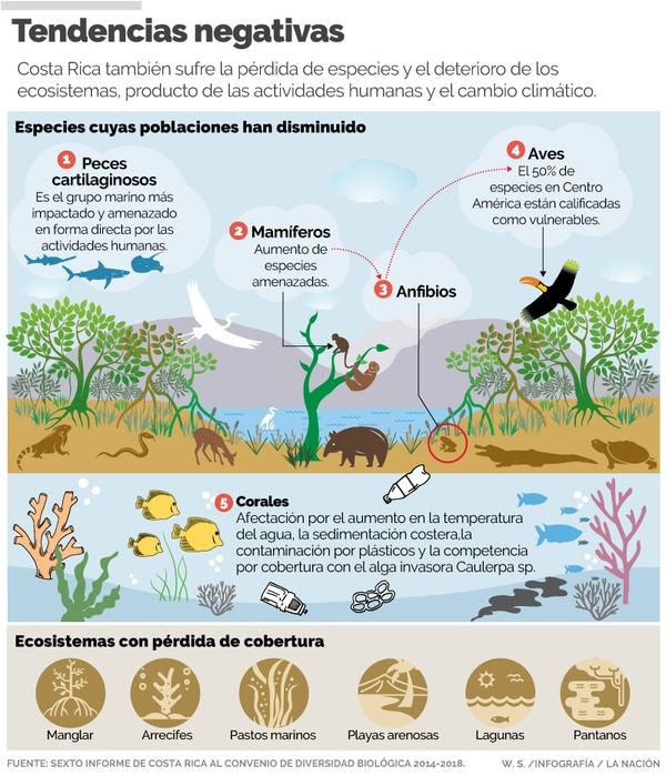 Estado de la diversidad biológica en Costa Rica.