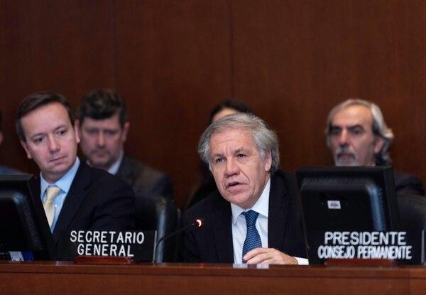 El secretario general de la OEA, Luis Almagro (centro), durante una sesión del Consejo Permanente del organismo, en Washington, el 11 de enero del 2019. Foto: OEA