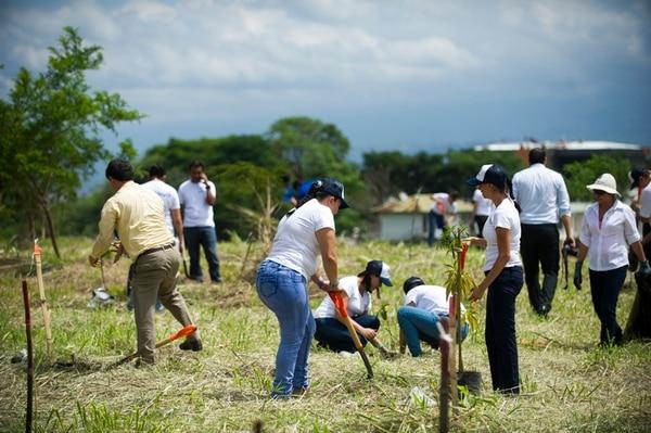 Voluntarios de las empresas Riteve, Cemex y Hyundai se sumaron a la jornada de siembra en el área verde Espíritu Santo, ubicada detrás del centro comercial Plaza Mayor en Rohrmoser. Esta zona forma parte del Corredor Biológico Interurbano río Torres.   LUIS NAVARRO
