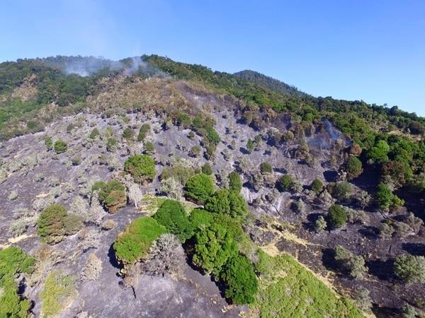En el terreno se observa como el fuego consumió toda la vegetación.