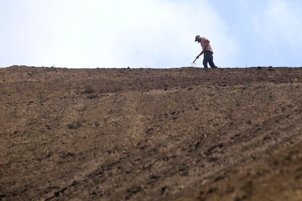 Entre las actividades más afectadas estarían la agricultura y la construcción porque se realizan al aire libre. Foto con fines ilustrativos: Rafael Pacheco