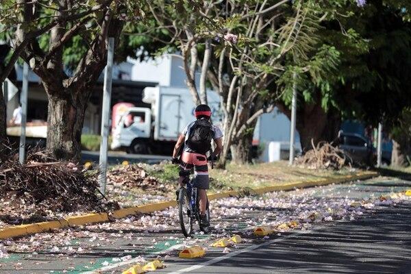 Costa Rica cuenta con tres normas técnicas que buscan garantizar la seguridad de los ciclistas, por medio del establecimiento de parámetros de calidad en cuanto a la vestimenta, el casco y la infraestructura de las ciclovías. Foto: Archivo