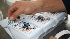 Certificaciones ayudan a empresas a proyectar sus esfuerzos ambientales