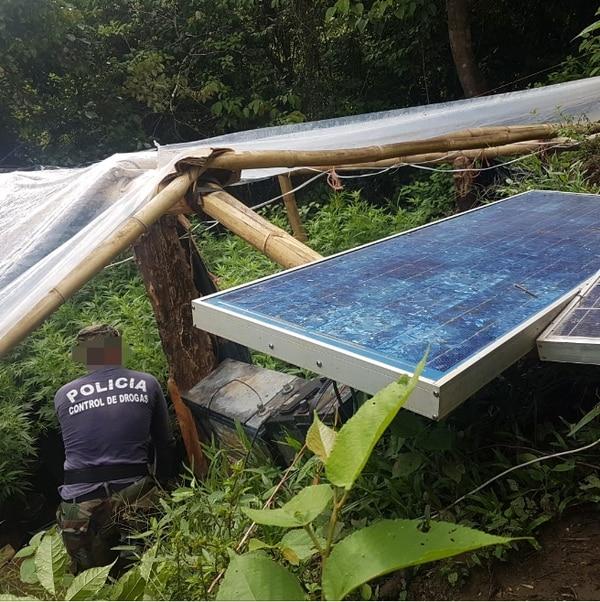El vivero de marihuana estaba cubierto con plástico y tenía páneles solares. Foto cortesía de MSP