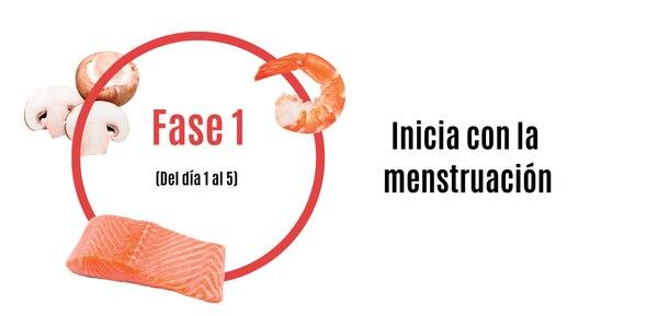 FASE11