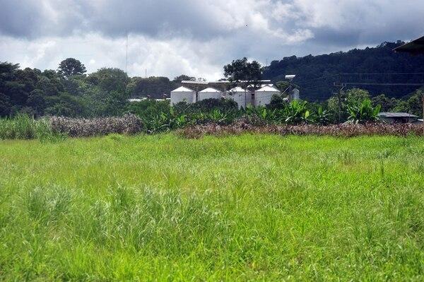 Este es el lugar en Río Claro, llamado 'el Poli', donde se construiría el complejo de piscinas para los Juegos Nacionales del próximo año. La obra, según el Icoder, debía comenzar este 28 de agosto, ahora no hay certeza.   JOSÉ RIVERA