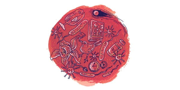 Ilustración de Juan Carlos Alpízar