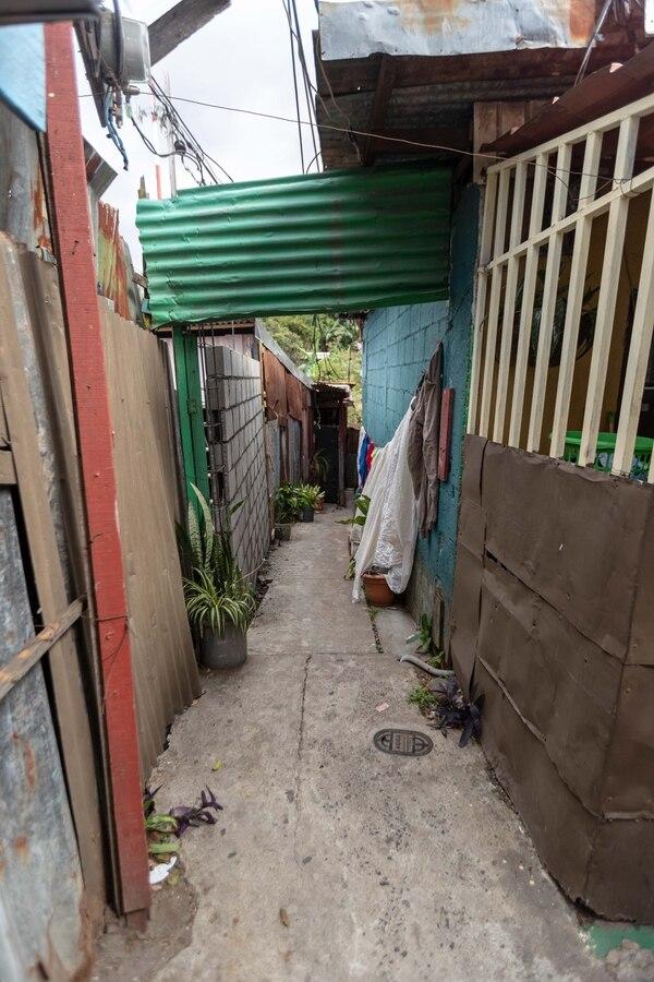 Este es el camino hacia un pequeño planché donde Paté jugaba bolinchas. Fotografía: José Cordero.