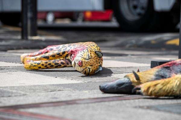 Este viernes se lanzó en el centro de San José una campaña para concientizar a la población, sobre el atropello de animales silvestres en el marco del inicio de las vacaciones de medio año. Fotografía: Alejandro Gamboa Madrigal
