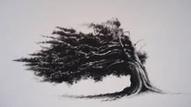 Legado de artista Sila Chanto brota en árboles