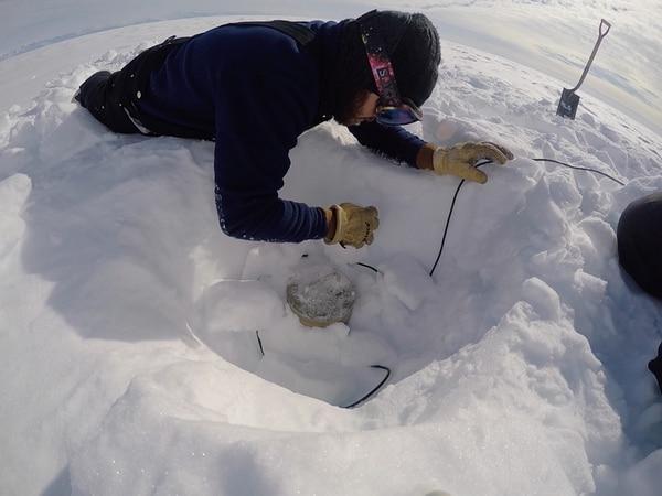 Como parte de las tareas a realizar en el marco de la expedición, el sismólogo Esteban Chaves dio mantenimiento a 13 estaciones sísmicas y 24 estaciones de GPS que componen tres conjuntos ubicados sobre la capa de hielo que yace sobre el lago subglacial Whillans. | CORTESÍA DE ESTEBAN CHAVES