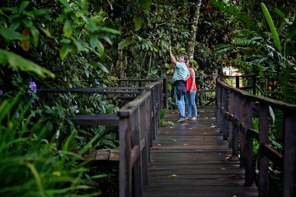 Hay diferentes actividades para llevar a cabo en las instalaciones del hotel. Una de las más atractivas es la caminata por los senderos naturales. Fotografía: John Durán.