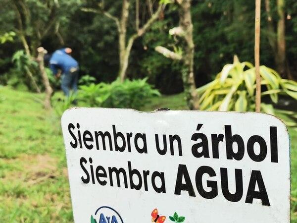 Entre los objetivos están mejorar la calidad del aire y del agua, así como una mayor protección de las especies de flora y fauna que habitan la zona. Fotos: cortesía de Minae.