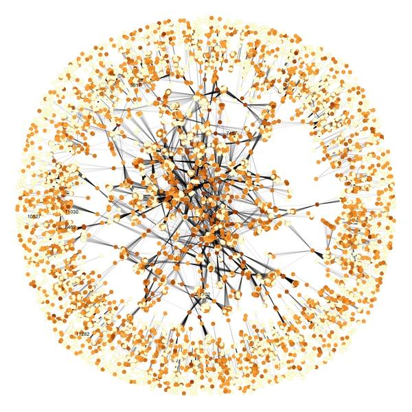 Esta imagen muestra la complejidad de de la porción de ingredientes inactivos en los medicamentos orales. Hay multiplicidad de formulaciones para causar un mismo efecto terapéutico en un paciente. Ilustración hecha por Daniel Reker y Gio Traverso