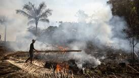 Pacto por la conservación del Amazonas lleva tres años sin resultados ni financiamiento