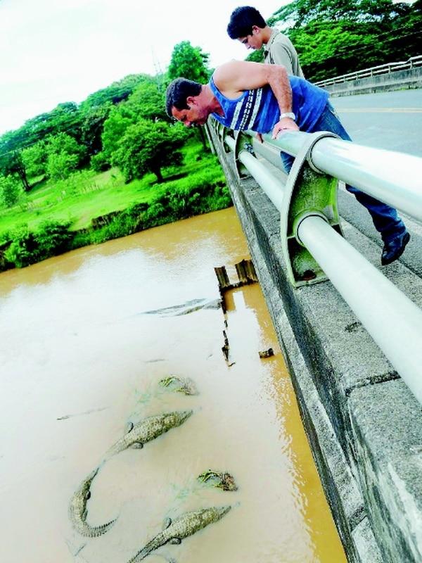 Conavi realiza desde hoy obras en los rellenos de aproximación del puente