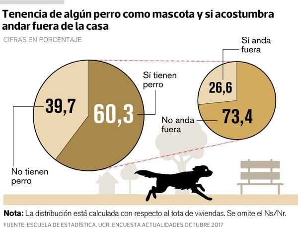Perros que son mascotas y que se mueven entre la calle y su hogar.