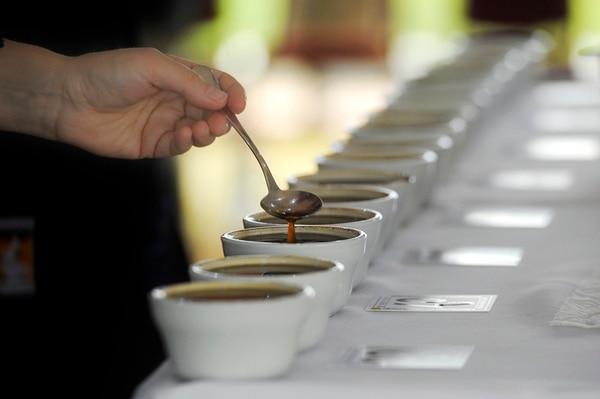 """15/06/2014. San José, Cata internacional de café """" taza a la excelencia"""" donde catadores de todo el mundo vienen apuntuar a los mejores cafés de Costa Rica ./Pablo Montiel"""