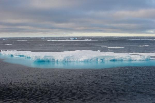 Debido al calentamiento de las aguas, los icebergs son cada vez menos.