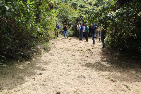 En este espacio es donde se habilitarán las 10 plataformas donde se podrán colocar las tiendas de campaña de los visitantes. Foto: Asociación Costa Rica por Siempre