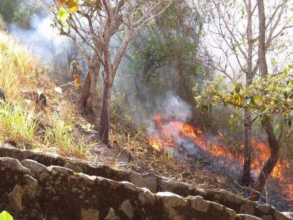 Los incendios forestales grandes son algunos de los que más exigen a los bomberos. En el verano de este año, en el cerro Chompipe, Orotina de Alajuela, las brigadas del Cuerpo de Bomberos tuvieron que emplearse a fondo varios días para extinguir las llamas. | CUERPO DE BOMBEROS.
