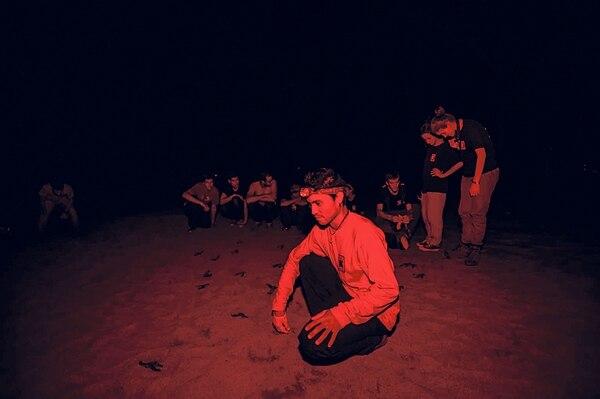 El asistente de investigación, Álvaro García, liberó 40 tortugas baula que nacieron en la playa Nombre de Jesús, en Guanacaste. Lo acompaña un grupo de voluntarios.   ALONSO TENORIO