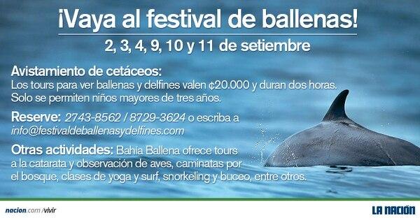 VIII Festival de Ballenas y Delfines