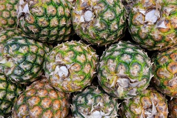 En Costa Rica, la piña se posiciona como el segundo producto de exportación más importante dentro del sector agrícola. La supera únicamente el banano /Fotograf[ia: Rafael Pacheco