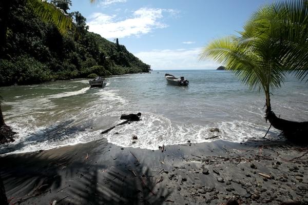 Isla del Coco es el único punto emergido de la cordillera submarina del Coco y se diferencia de otras islas del Pacífico Tropical Oriental, como las islas Galápagos, en que tiene una alta precipitación. Eso hace que su vegetación sea siempre verde e incluso tenga un bosque nuboso. Fotografía: John Durán