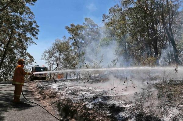 Más de 3.000 bomberos y 367 camiones cisternas combaten desde hace días las decenas de incendios que arden al norte, oeste y sur de Sidney.