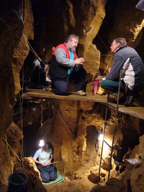 El trabajo de los diversos investigadores trata de descifrar las especie europeas más antiguas.