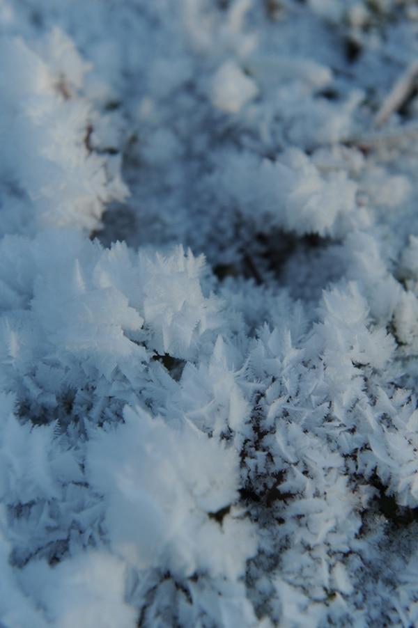 Cristales de hielo se formaron ayer en un terreno próximo a una alcantarilla en la localidad de Paducah, estado de Kentucky. | AP
