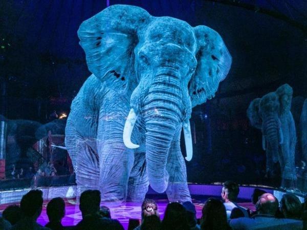 Once proyectores ZU850 de larga duración emiten hologramas brillantes de animales salvajes que pueden verse a 360° para toda la audiencia. Foto con fines ilustrativos. (Foto: Roncalli)