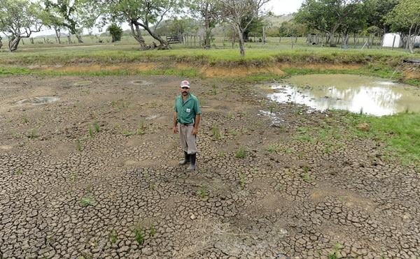 A finales de este siglo, la OMS estima que el cambio climático eleve la frecuencia y la intensidad de las sequías a nivel regional y mundial.