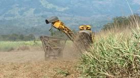 Laica y Consumidores de Costa Rica elevarían a tribunales pugna por azúcar
