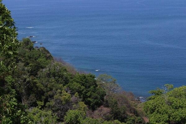 Vista al mar y contraste con lo verde del bosque seco.