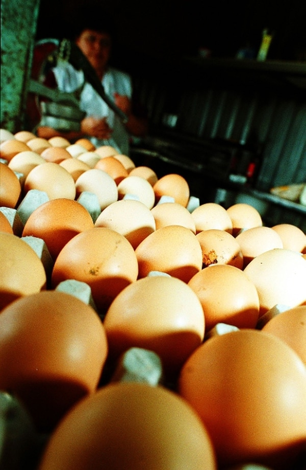 Costo de la canasta básica alimentaria retomó crecimiento - 1