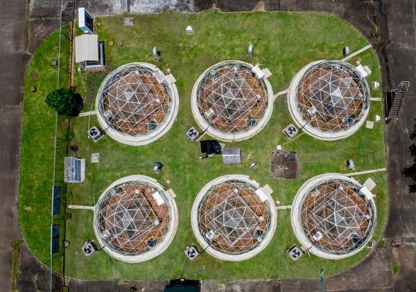 El Smithsonian simula en este lugar escenarios climáticos extremos para ver cómo se comporta la vegetación tropical. ( Luis ACOSTA / AFP)