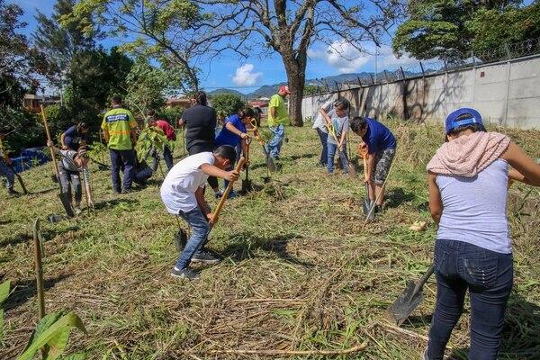 Voluntarios participan en la siembra de árboles organizada por la Municipalidad de San José en las márgenes del Río María Aguilar en Hatillo. Foto: Twitter de la Municipalidad de San José
