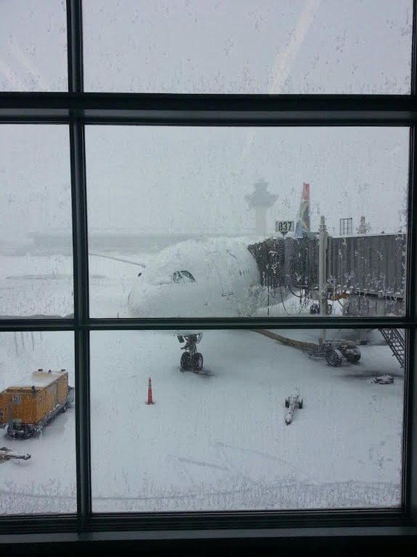 La ciudad de Washington está en vuelta por la nieve tras una tormenta que inició la madrugada de este jueves.