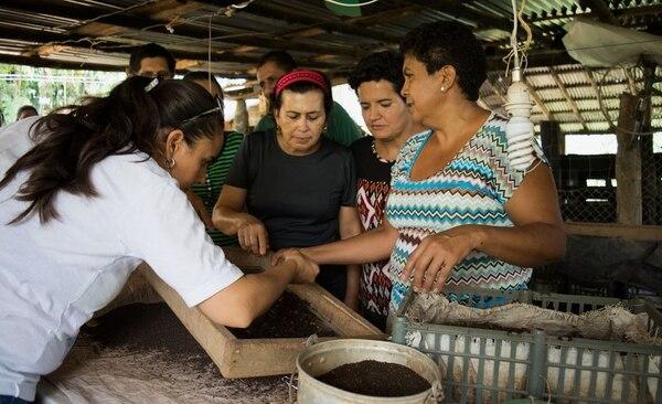 El proyecto Permacultura de Cóbano, Puntarenas, es uno de los que se visibilizarán esta novena temporada en 'Forjadores'.
