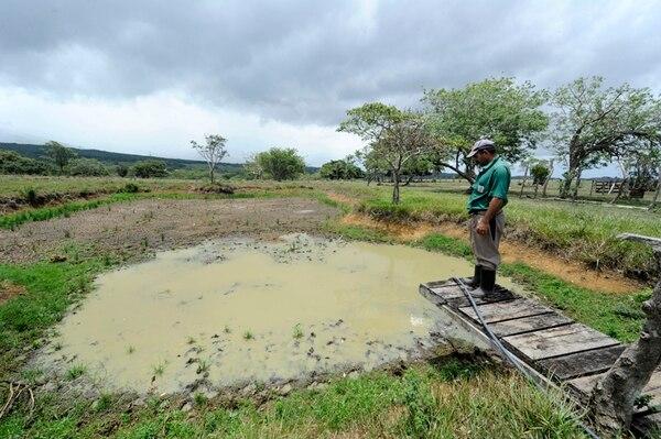 El impacto del fenómeno de El Niño ha generado prolongadas sequías en la región y causado grandes pérdidas económicas para los sectores productivos agropecuarios. Miguel Picado mira un antiguo estanque de peces que se secó. | GRACIELA SOLÍS.